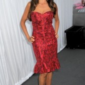 Sofia Vergara - 2012 Glamour Women of the Year Awards